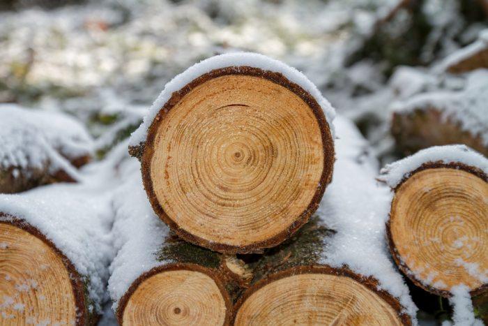 Leseni plohi 50mm, 80mm, 100mm